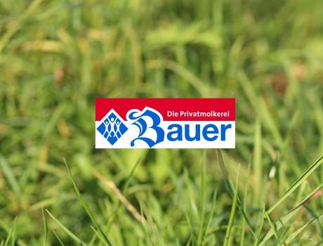 "Coming soon: Molkerei Bauer ""Fantasie"""